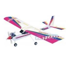 image: Aeromodel Canary 40, Trainer Phoenix
