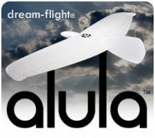image: Aeromodel Alula, kit planor DreamFlight